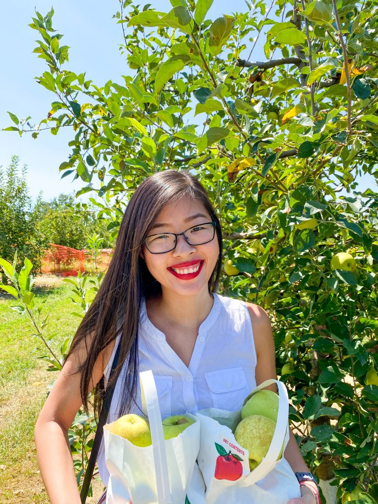 Apple Picking at Millstone Creek Orchards